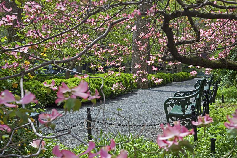 New York Insider's Guide Gramercy Park