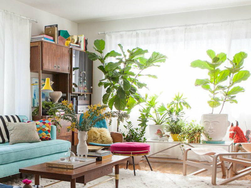 10 Cheerful Living Room Ideas With Plants Covet Edition