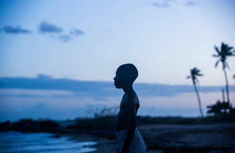 moonlight Oscars 2017 Oscars 2017 – The Most Outstanding Achievements In Cinematography moonlight