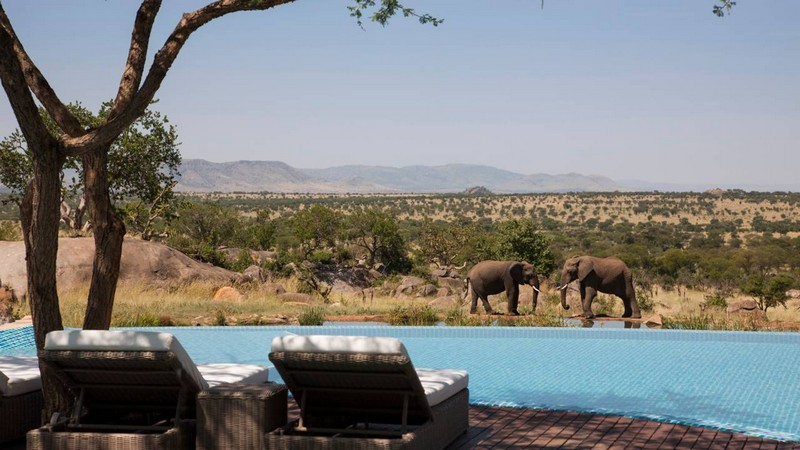 Be In Touch with Nature In the Four Seasons Safari Lodge Serengeti 7