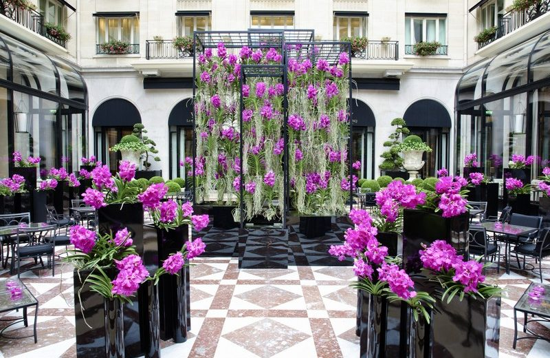 Discover Fine French Hospitality with the Four Seasons Hotel George V 8 four seasons hotel george v Discover Fine French Hospitality with the Four Seasons Hotel George V Discover Fine French Hospitality with the Four Seasons Hotel George V 8