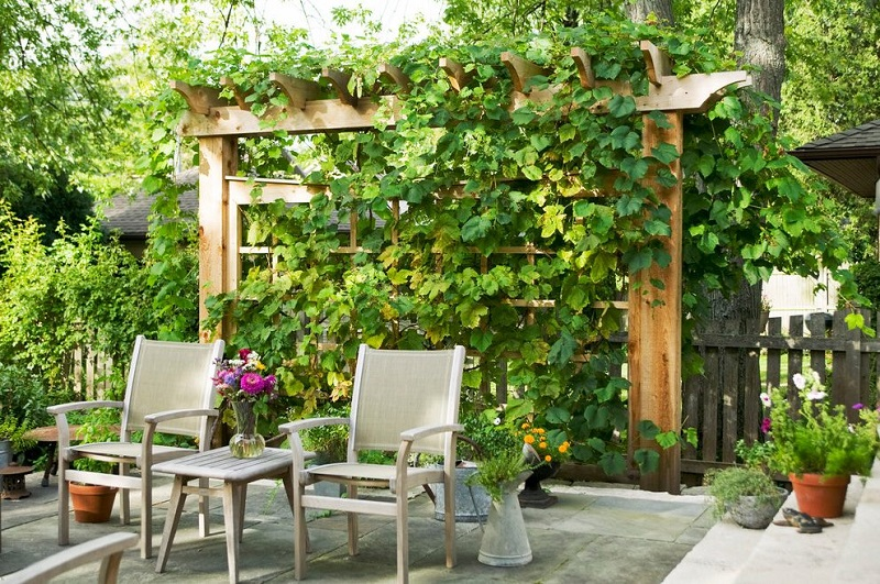 Top Garden Trends For 2018 Top Garden Trends For 2018 To Revamp Your Luxury Outdoor Living Spaces Top Garden Trends For 2018 To Revamp Your Outdoor Refuge 11
