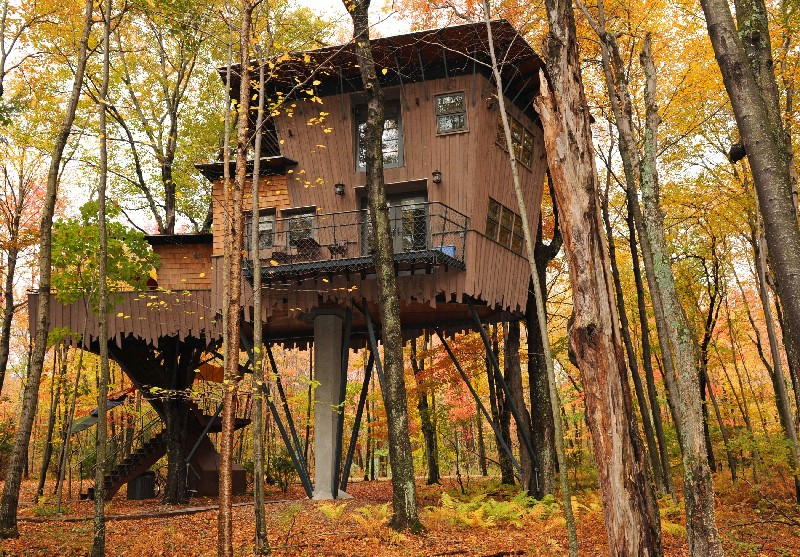 Discover 7 Eco-Friendly Luxury Treehouses You Will Love To Stay In eco-friendly luxury treehouses Discover 7 Eco-Friendly Luxury Treehouses You Will Love To Stay In Discover 7 Eco Friendly Luxury Treehouses You Will Love To Stay In 7