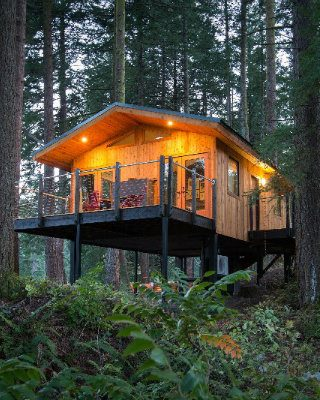 Discover 7 Eco-Friendly Luxury Treehouses You Will Love To Stay In