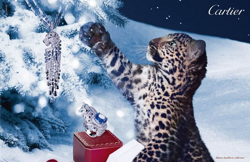 Top 10 Luxury Jewelry Brands in the World You Must Know Before Xmas ➤ #covetedmagazine #interiordesign #homedecor #luxuryinteriors #homeinteriordecor #bestdesignprojects #bestdesignprojectsinportugal ➤ www.covetedition.com ➤ @covetedmagazine @bocadolobo @delightfulll @brabbu @essentialhomeeu @circudesign @mvalentinabath @luxxu @covethouse_ @rug_society @pullcast_jewelryhardware @bybrabbucontract