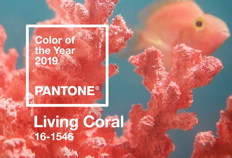 MOM Selection of Best Products With Pantone 2019 Living Coral ➤ #covetedmagazine #interiordesign #homedecor #thebestofmom #maisonetobjet2019 #designtrends #covetawards #luxurybrands #pantone #livingcoral ➤ www.covetedition.com ➤ @covetedmagazine @bocadolobo @delightfulll @brabbu @essentialhomeeu @circudesign @mvalentinabath @luxxu @covethouse_ @rug_society @pullcast_jewelryhardware @byfoogo