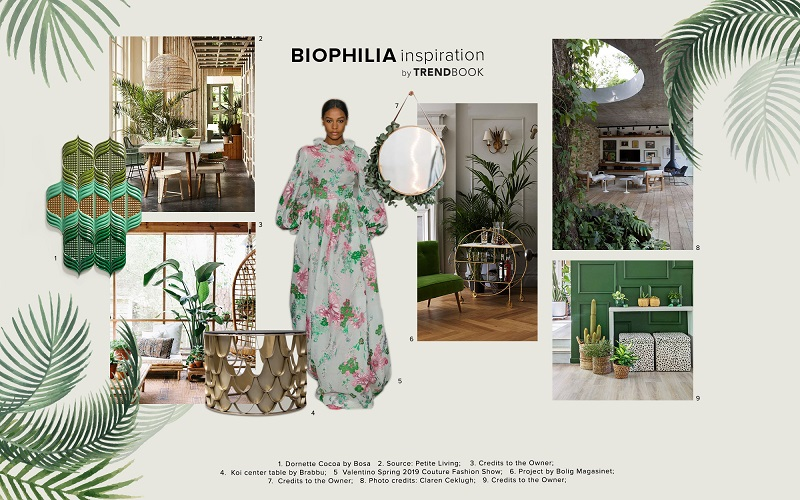 Biophilia Trend Color Scheme Moodboard Collection