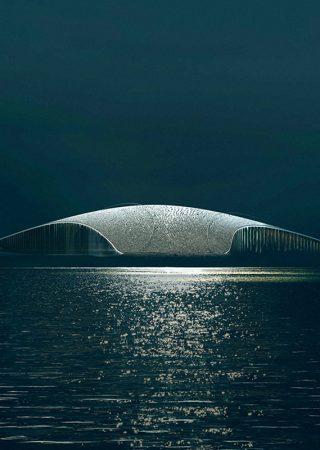 Dorte Mandrup: The Architecture Over-Achievers